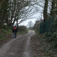 SZ0278 : Footpath to Townsend Nature Reserve