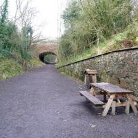 NZ8910 : Picnic table on the railway path