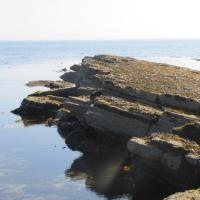 NU2329 : Rocky shore, Beadnell
