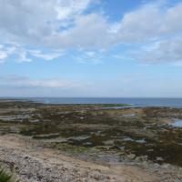 NU2329 : Beadnell Haven