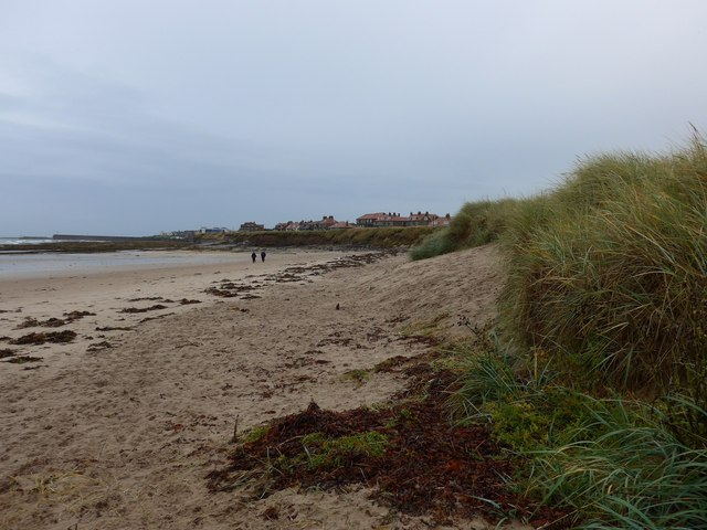 NU2132 : The beach north of Seahouses
