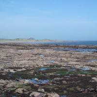 NU2132 : Foreshore at Seahouses