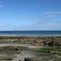 NU2132 : The Tumblers and Farne Islands, Seahouses