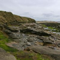 NU2132 : Foreshore to the north of Seahouses