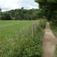 SO7876 : North Worcestershire Path along the River Severn