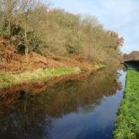 SO8172 : Staffordshire and Worcestershire Canal